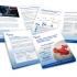 ICIS LNG Brochure