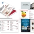 Singapore Indian Chamber of Commerce and Industry Membership Directory 2012/2013
